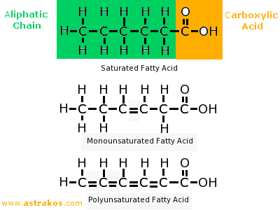 Fatty Acids Molecule