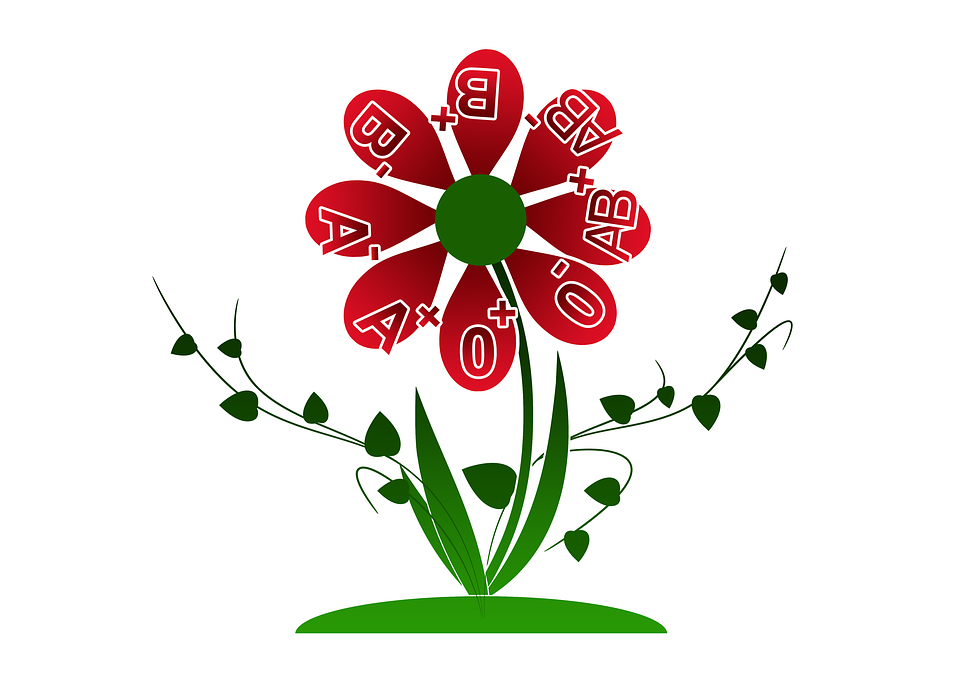 Blood group O red flower shows all blood types