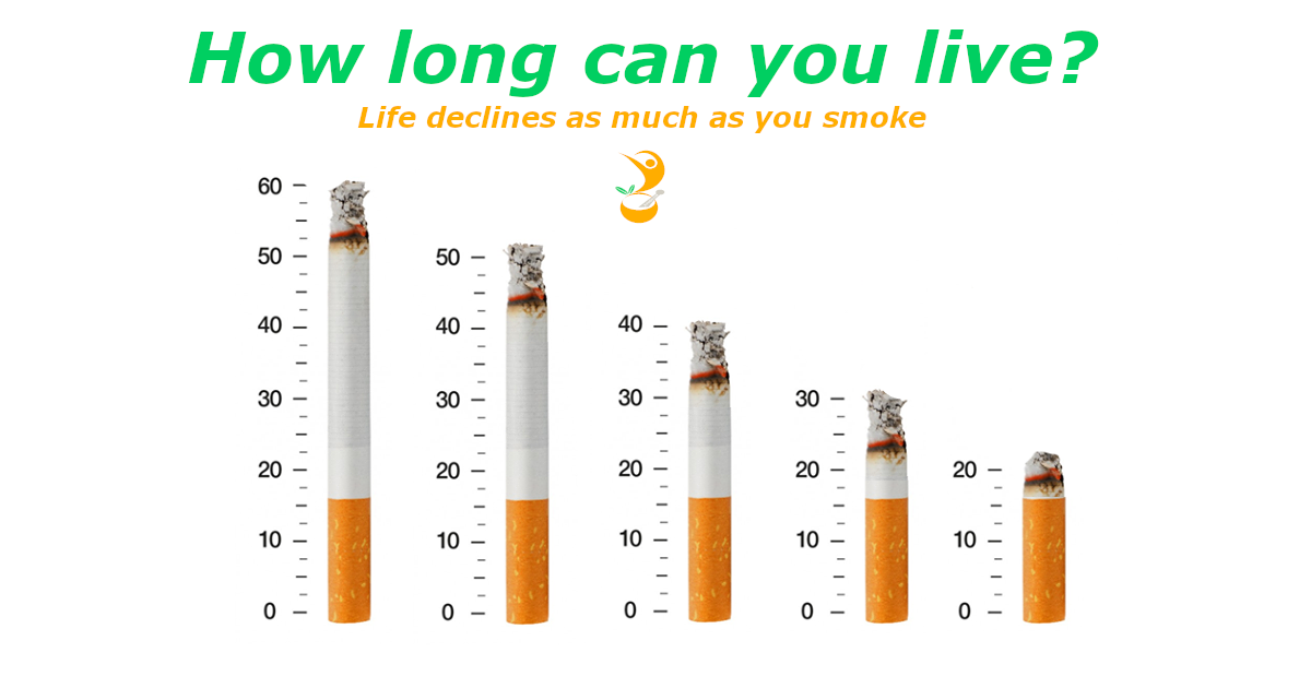 Smoking from the perspectives of biological process, life course and social context
