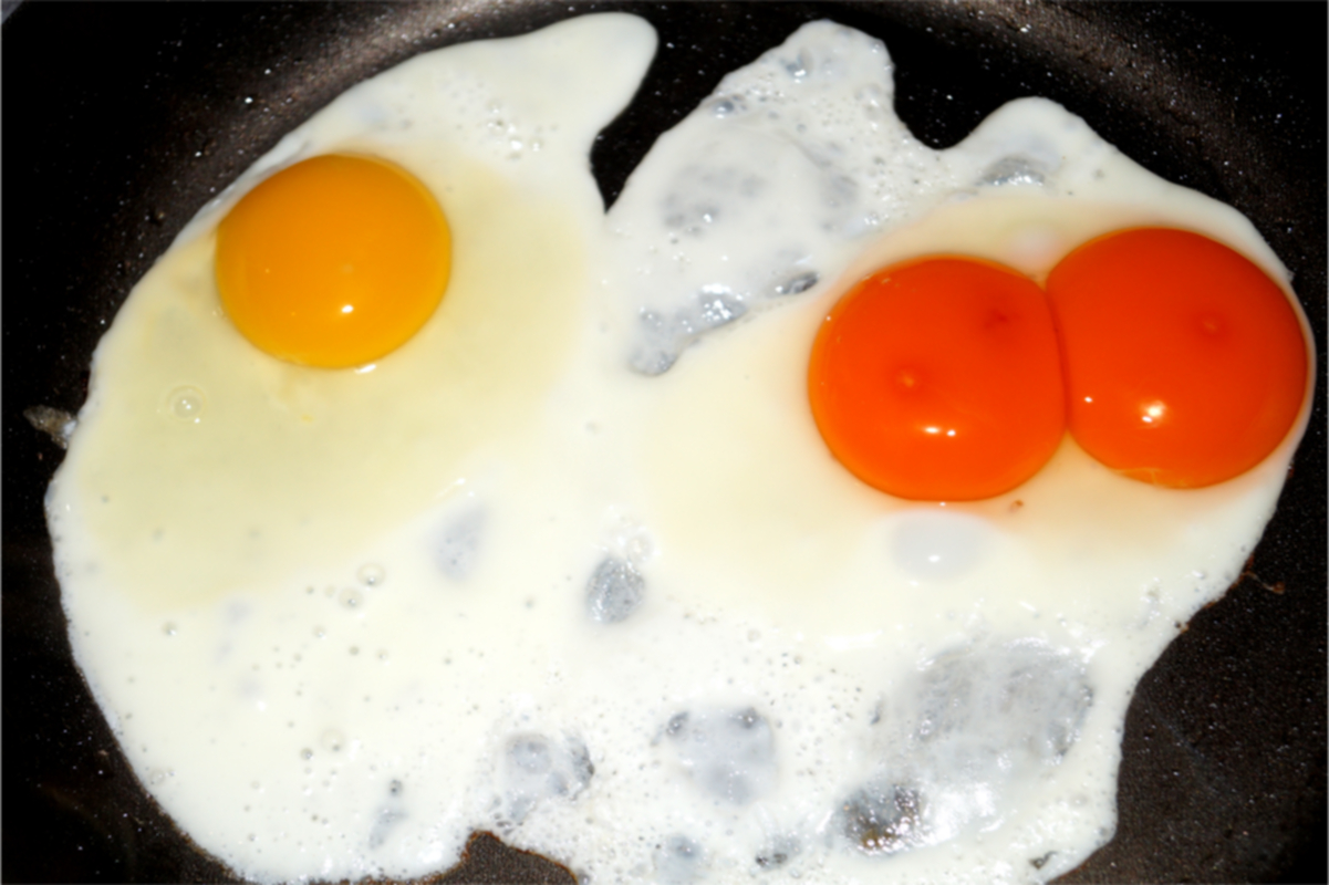 Double Yolked Egg,The Egg Yolk From Yellow To Gold